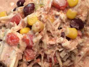 Slow Cooker Recipe Creamy Shredded Mexican Chicken Supplies Needed